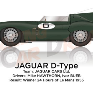 Jaguar D-Type n.6 winner 24 Hours of Le Mans 1955