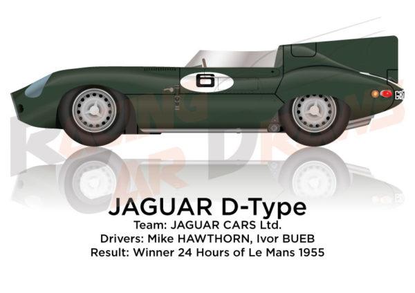 Jaguar D-Type n.6 winner 24 Hours of Le Mans 1955