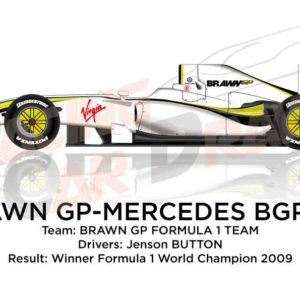 Brawn - Mercedes-Benz BGP001 n.22 winner Formula 1 Champion 2009